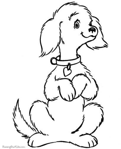 собака раскраска3