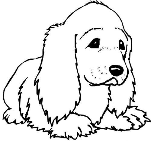 собака раскраска4