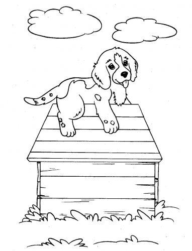 собака раскраска5