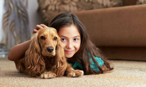 картинки собак для детей