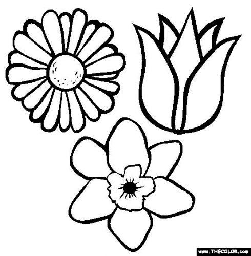 цветы раскраска