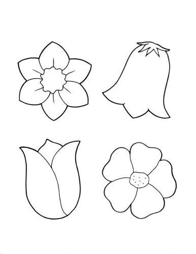 цветы раскраска13