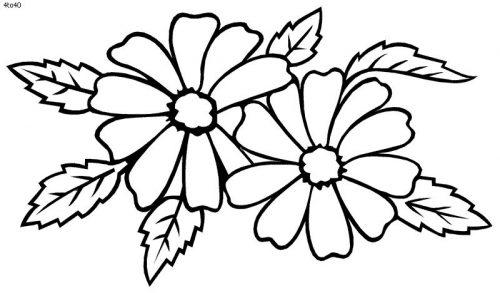 цветы раскраска5