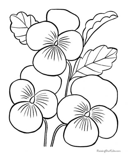 цветы раскраска8