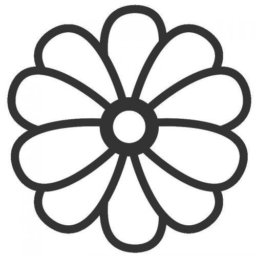цветы раскраска9