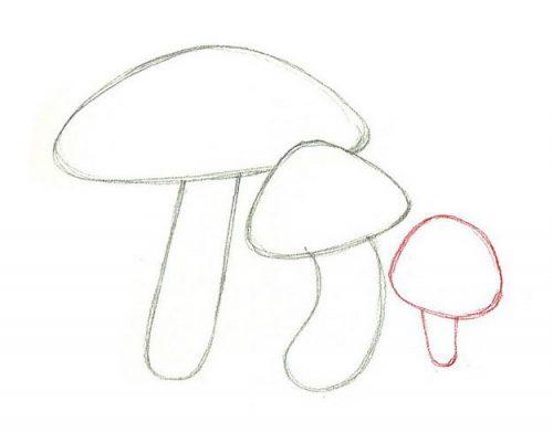 гриб раскраска16