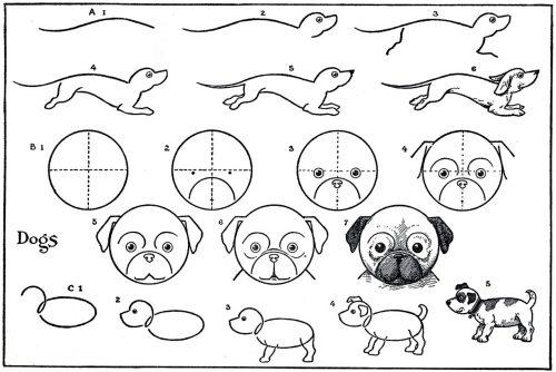 собака как нарисовать4