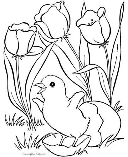 весна раскраска4