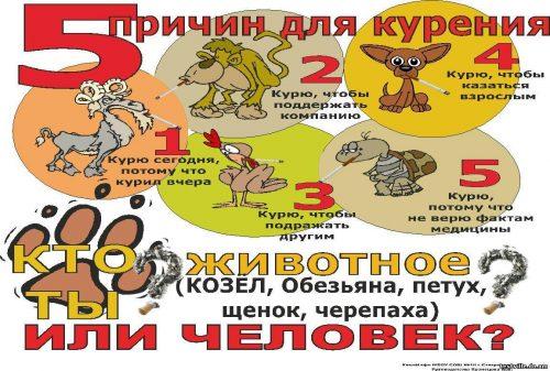 ЗОЖ плакат2