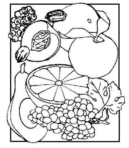 фрукты раскраска4