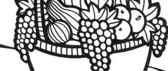 фрукты раскраска8