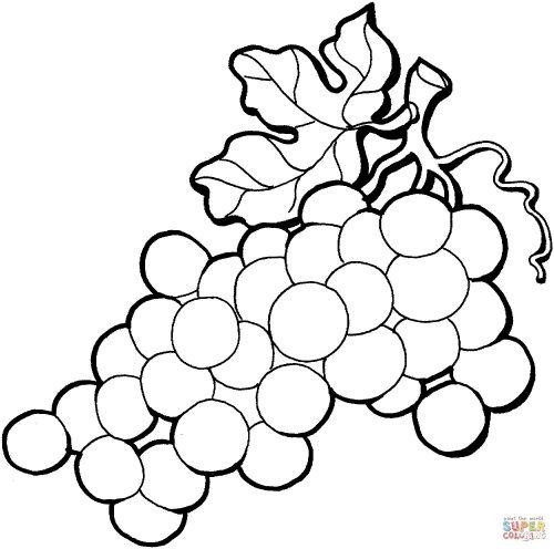 виноград раскраска2