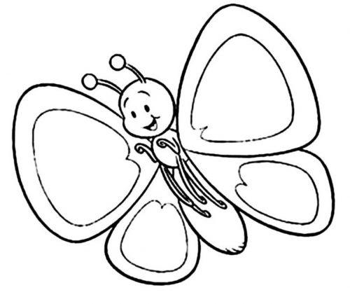бабочки раскраски8