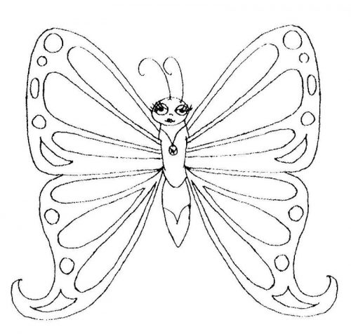 бабочки раскраски6