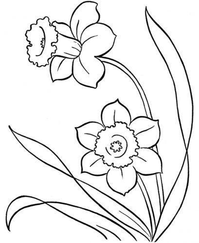 цветы разукрашка2