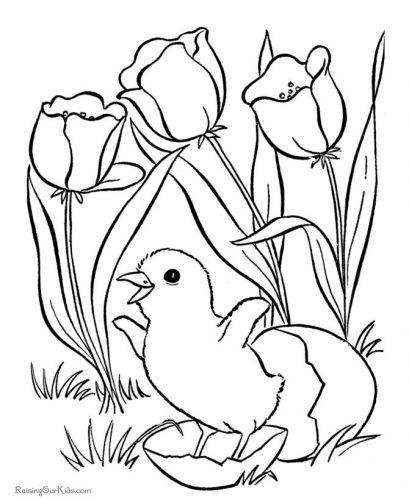 цветы разукрашка3