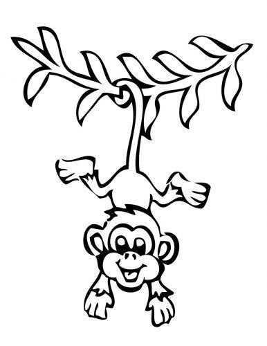 раскраска обезьяна8