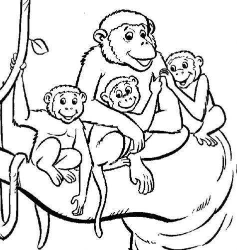 раскраска обезьяна мама с детьми