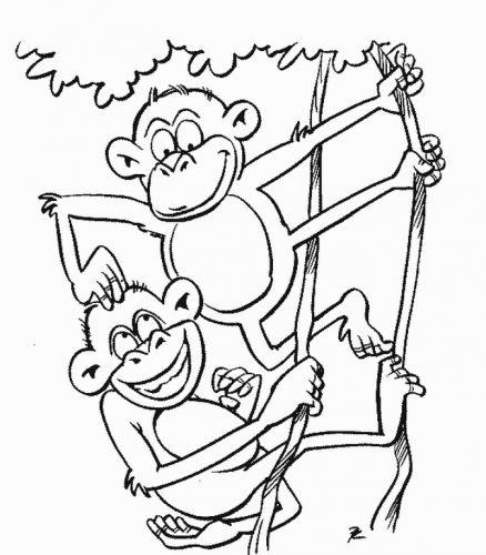 раскраска обезьяна10