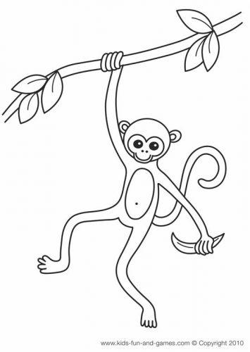 раскраска обезьяна11