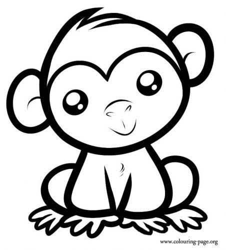 раскраска обезьяна3