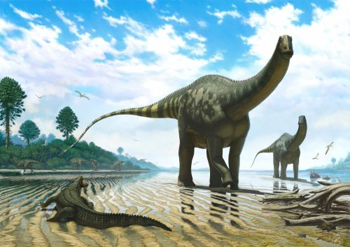 Динозавры картинки6