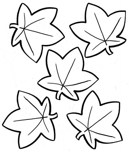 листья раскраска