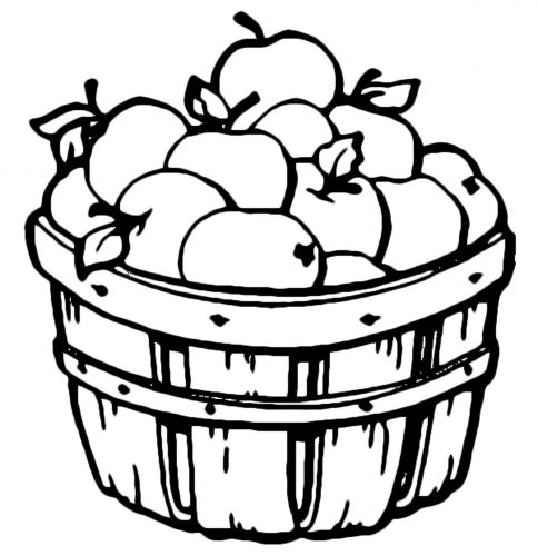 урожай яблок раскраска
