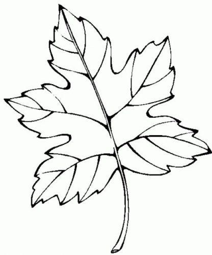 листочки раскраска