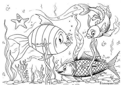 раскраска рыбы4