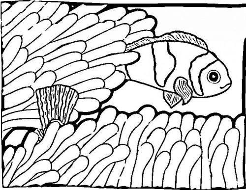 раскраска рыбы6