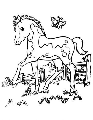 раскраска лошадка7
