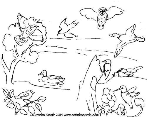 перелетные птицы раскраска2