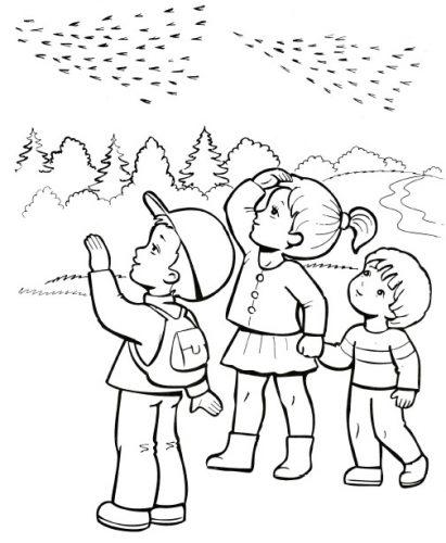 перелетные птицы раскраска7