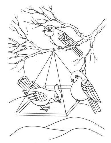 перелетные птицы раскраска9