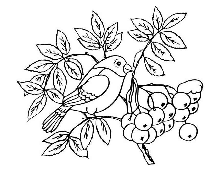 Дерево с птичкой рисунок