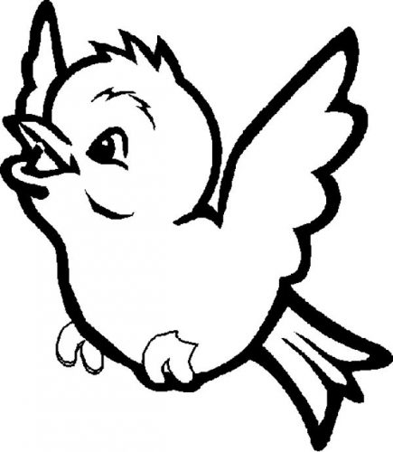 птицы весной раскраска6