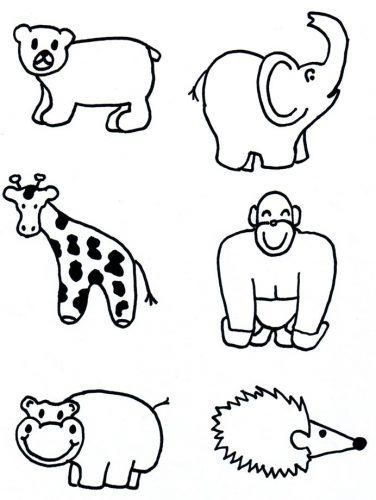 дикий мир животных3