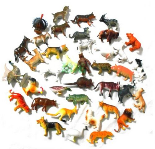 фото диких животных для детей7