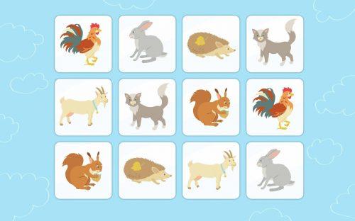 фото диких животных для детей3