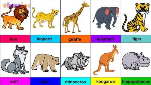 дикие животные для детей2