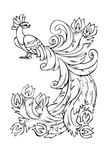 раскраска жар птица3