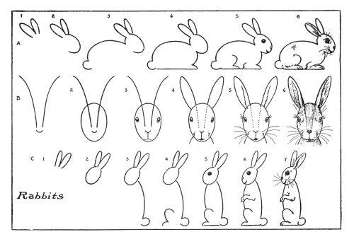 как нарисовать зайца3