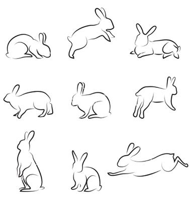 как нарисовать зайца4