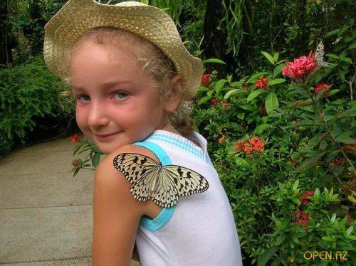 парк бабочек красноярск
