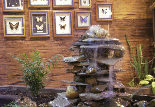 парк бабочек пермь3