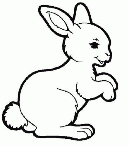 раскраска заяц2