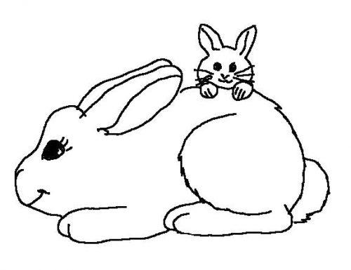 раскраска заяц11