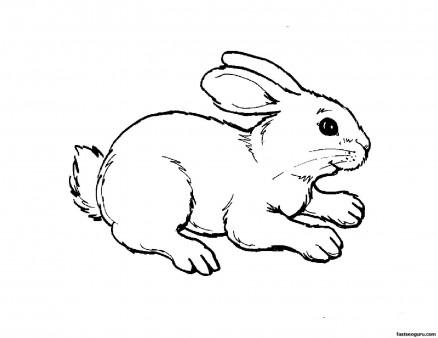 раскраска заяц15