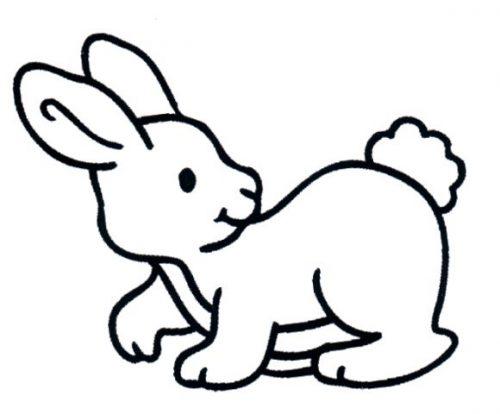 раскраска заяц16
